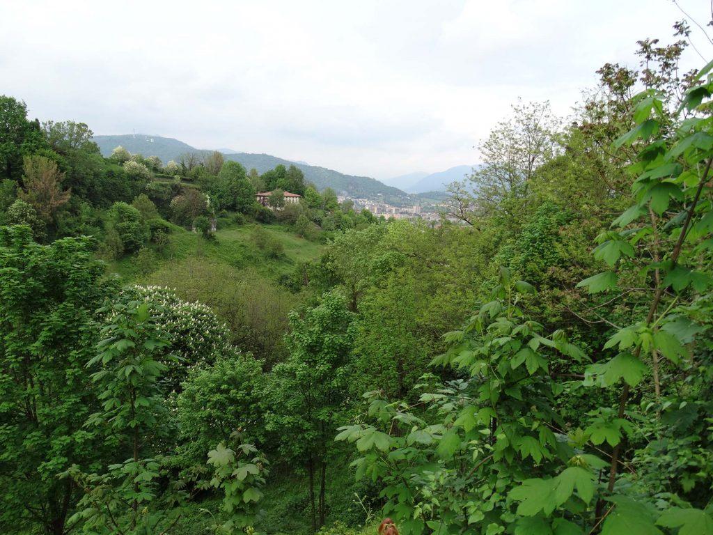 холмы Бергамо