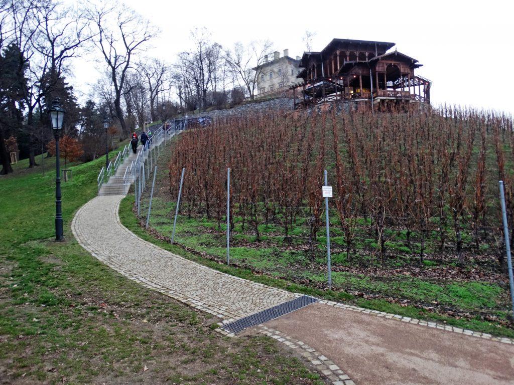 На Виноградах